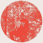 owen pallett heartland Verbicides Top 50 Albums of 2010