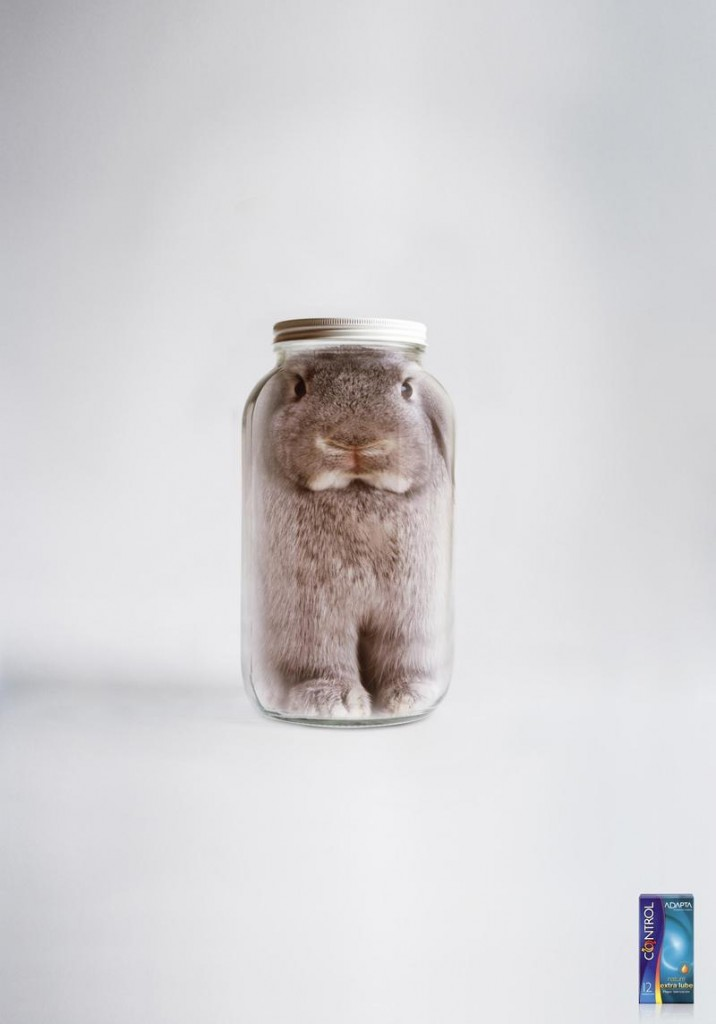 Rabbit in a jar?