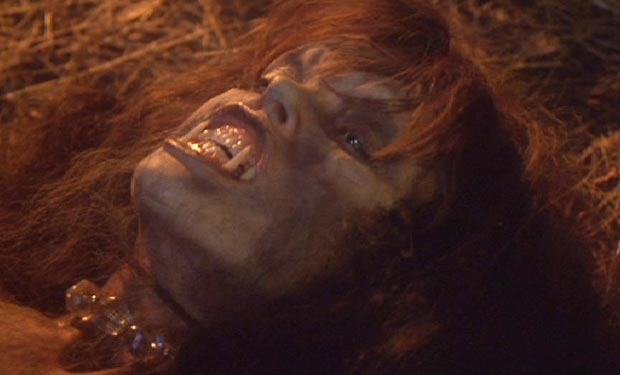 """Werewolf sex scene from """"The Howling"""""""