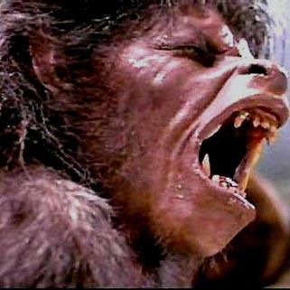 Top Five Horror Movie Scenes Werewolf Transformations