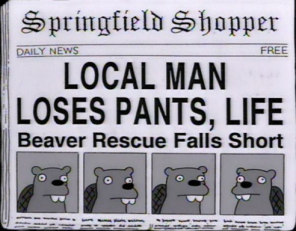 100 funny headlines from the simpsons page 3