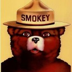 "Smokey Bear Visits ""The Daily Show"" to Discuss the Government Shutdown With Jon Stewart"