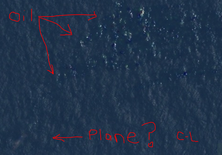 Location of Malaysia Airlines Flight 370, according to Courtney Love