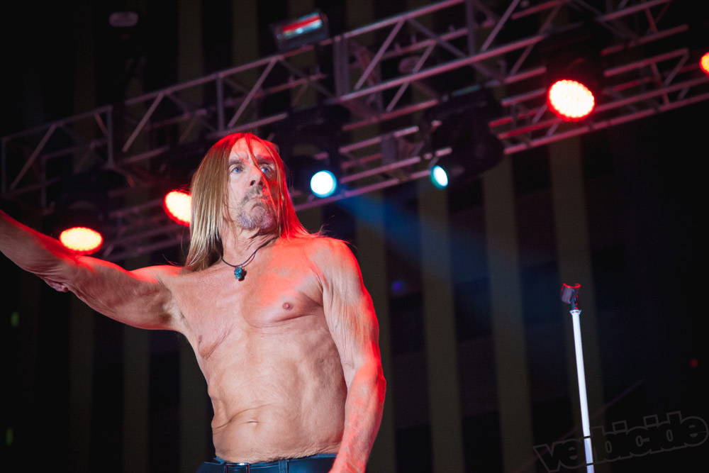 Iggy Pop - photo by Jacob Gallegos